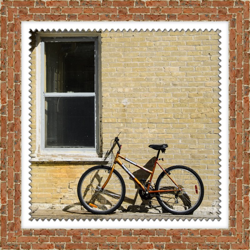 framed bycicle