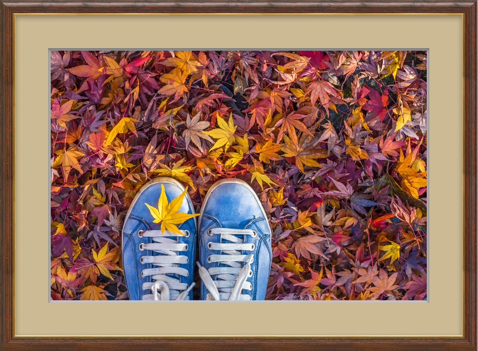 092016-cc-autumn-is-rolling-out-a-colorful-carpet-for-you-to-see-1