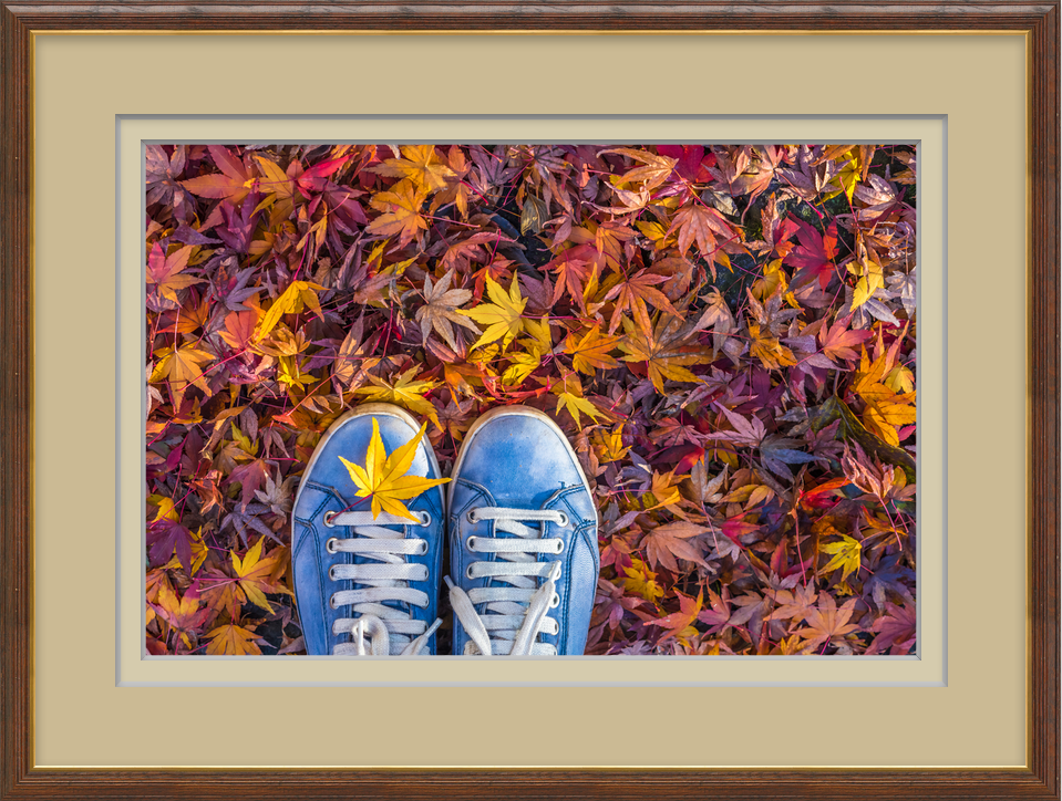 c-autumn-iscolorful-carpet-for-you-to-see-1